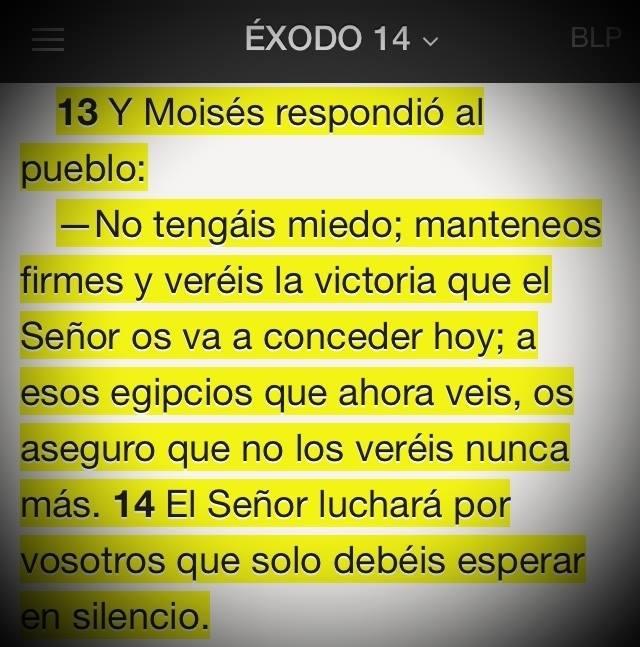 Dios abrirá caminos donde ahora hay mares de problemas y desiertos de muerte #Promesa Éxodo 14:13-14