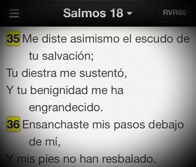 Sal18-35-36