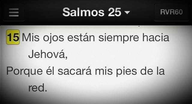 Sal25-15