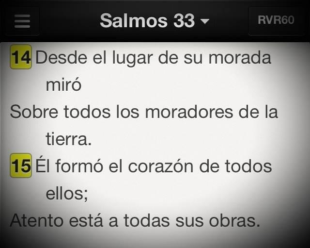 Sal33-14-15
