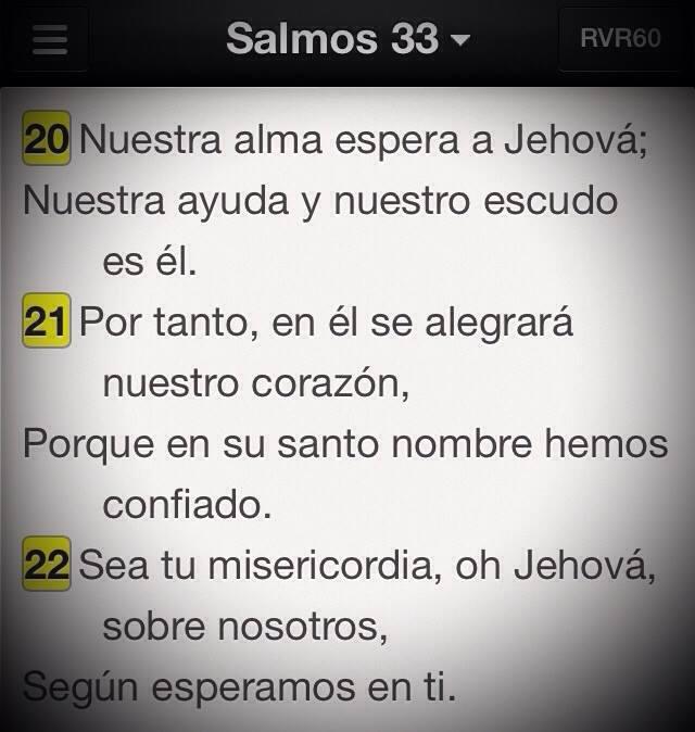 Sal33-20-22