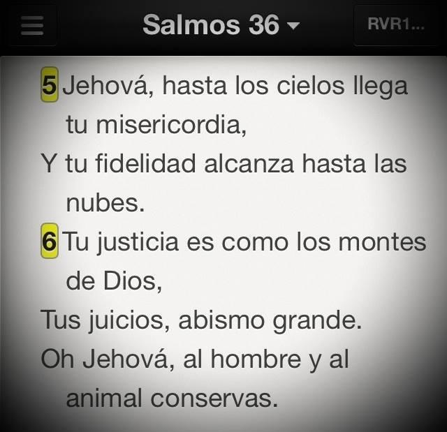 Sal36-5-6