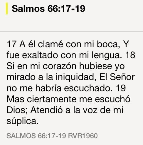 Sal66-17-19