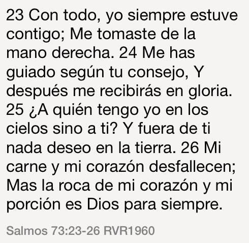 Sal73-23-26